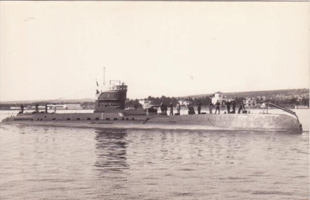Marine roumaine  Delfin11
