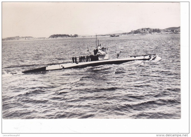 Marine chilienne H5_fre10