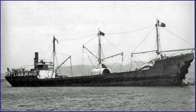 Marine du Perou  Kangur10