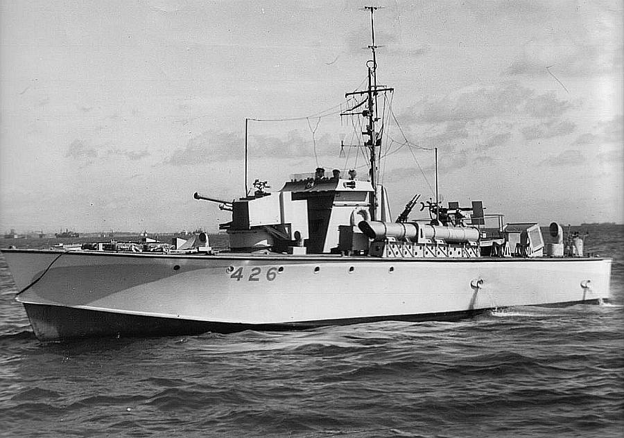 Marine polonaise  Mtb42610