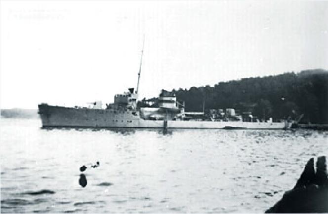 Marine norvégienne  Odin_e10