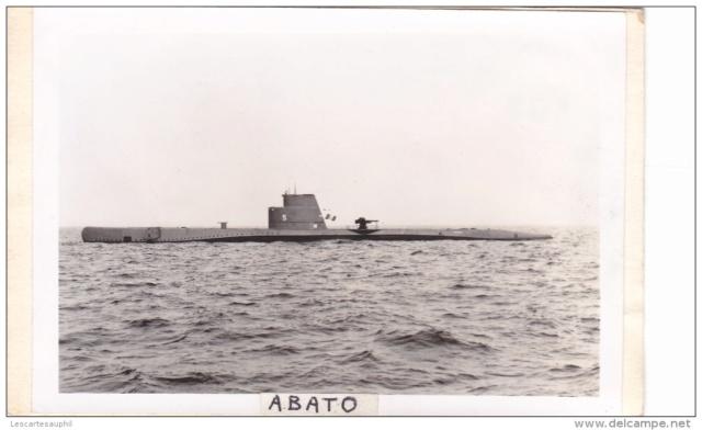 Marine du Perou  Tiburo10