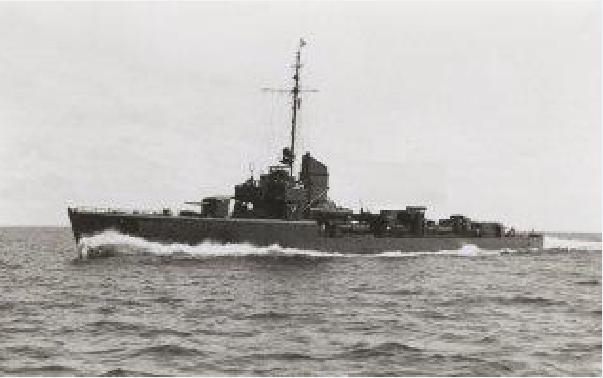 Marine norvégienne  Tiger_10