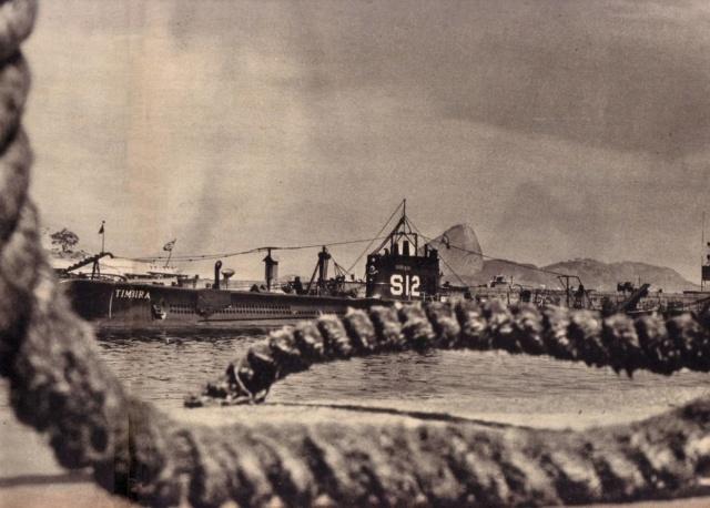 Marine brésilienne - Page 2 Tymbir10