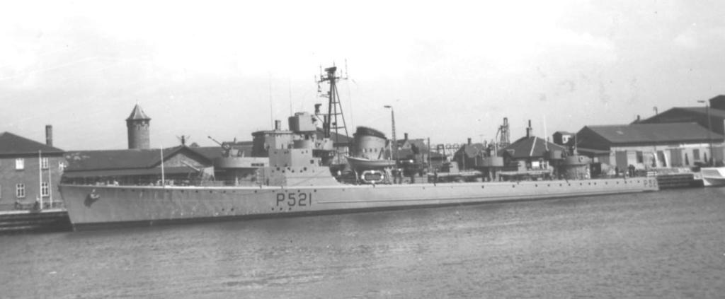 Marine danoise Willem10