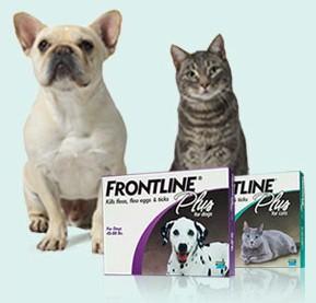 Frontline Promotion! Offer ends 12/31/11 Frontl11