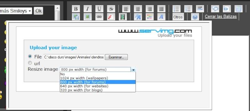 Método para subir imagenes Imagen12