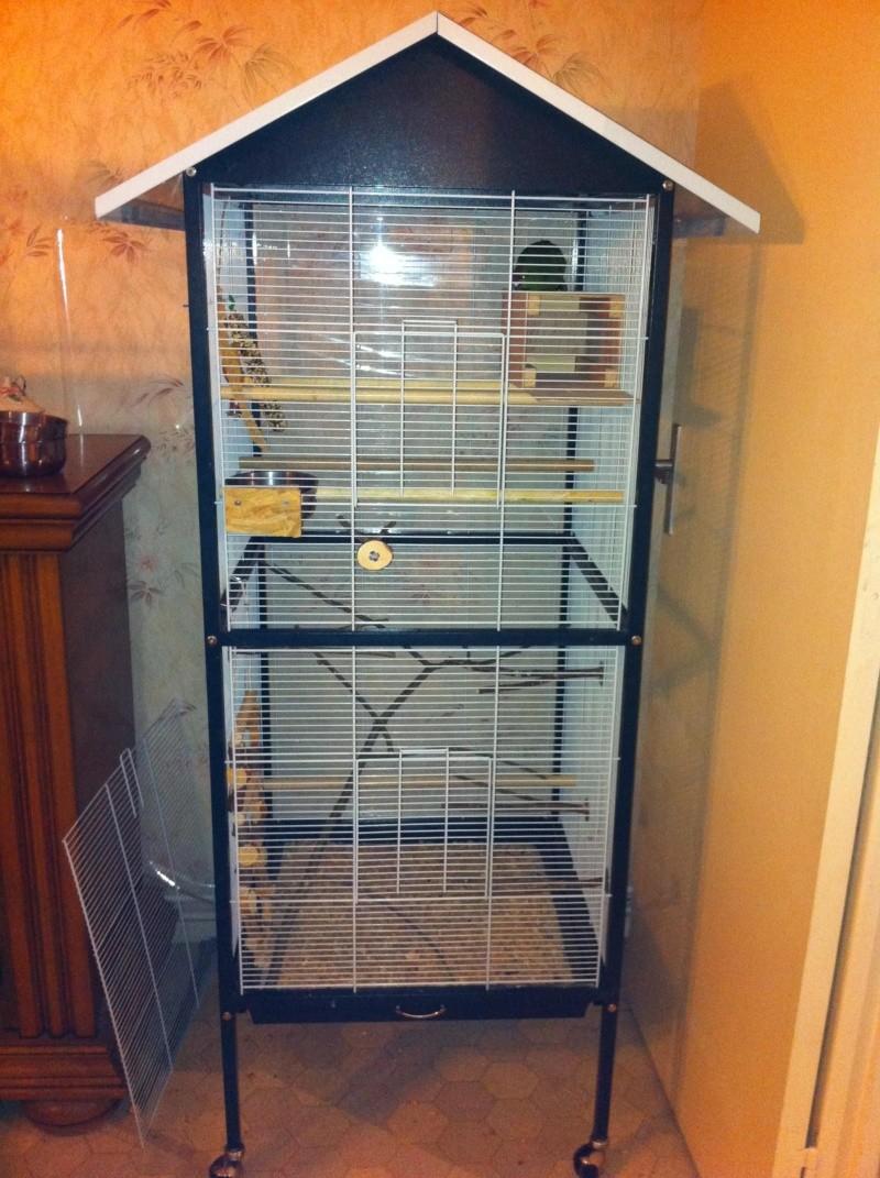 La cage de kiwi qu'en pensez-vous ? Cage_010