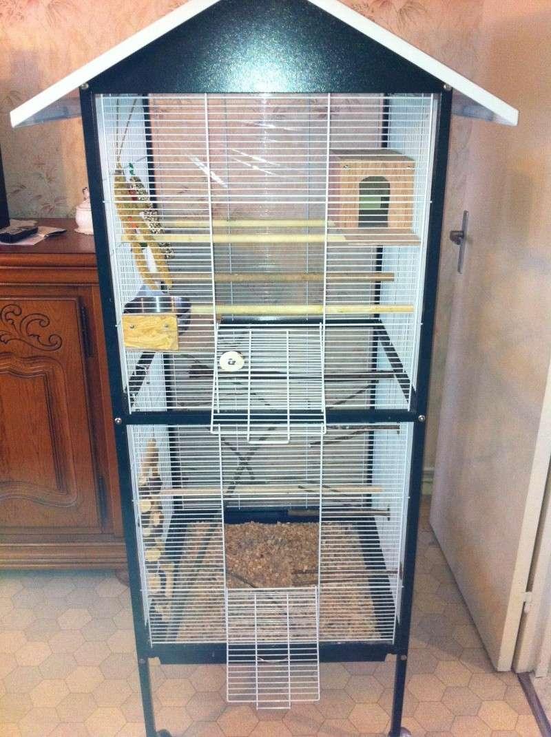 La cage de kiwi qu'en pensez-vous ? Cage_f10