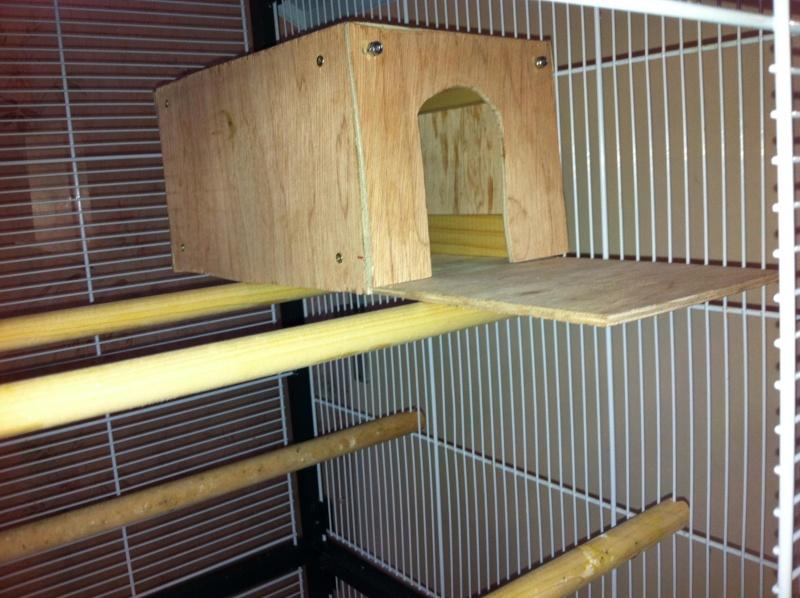 La cage de kiwi qu'en pensez-vous ? Cage_f12