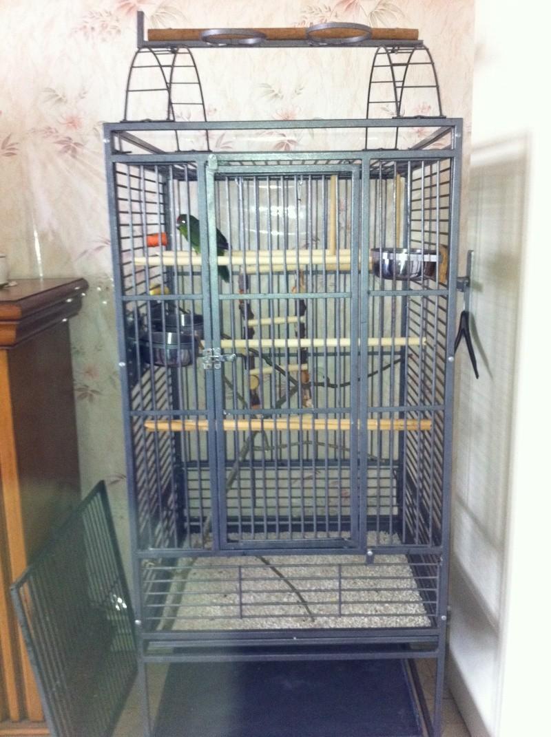 La cage de kiwi qu'en pensez-vous ? Kiwi_010