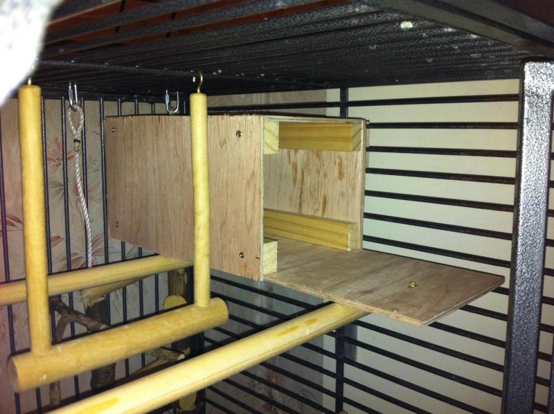 La cage de kiwi qu'en pensez-vous ? Kiwi_c10