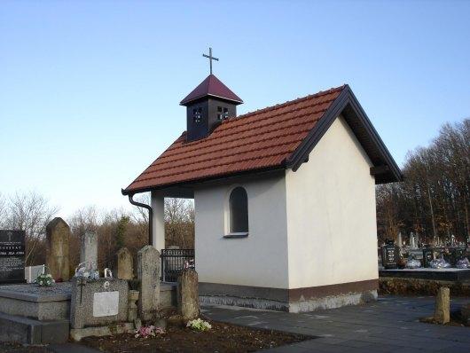Groblje i kapela u Višnjiku - Babin greb 310
