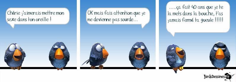 Les Birds Dessinés Cid_0710