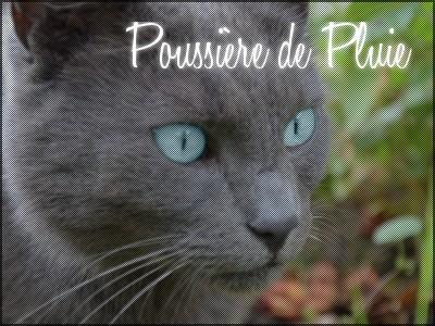 Petite Pluie ~ Nuage Agile ~ Poussière de Pluie ~ Etoile Agile  Poussi10