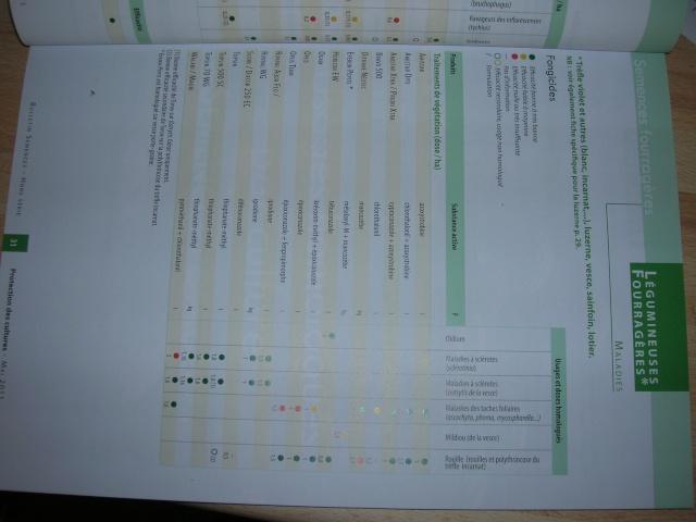 itinéraire technique de la vesce - Page 3 Dscn2421