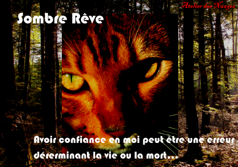Formulaire Pour Avoir élève/Prof . Sombre11