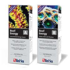 reef energy A et B  Reef_e10