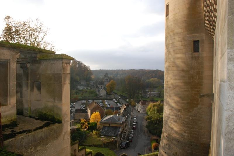 BALADE 11 NOVEMBRE - La Ferté-Milon - Château de PIERREFONDS - Page 2 Dsc_1414