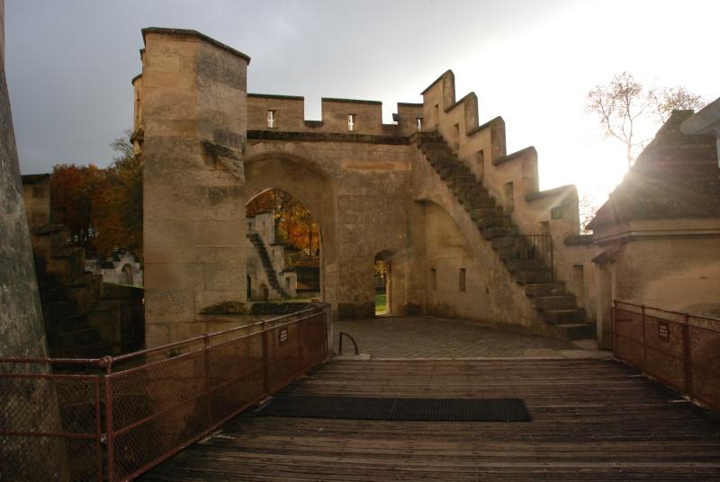 BALADE 11 NOVEMBRE - La Ferté-Milon - Château de PIERREFONDS - Page 2 Dsc_1415