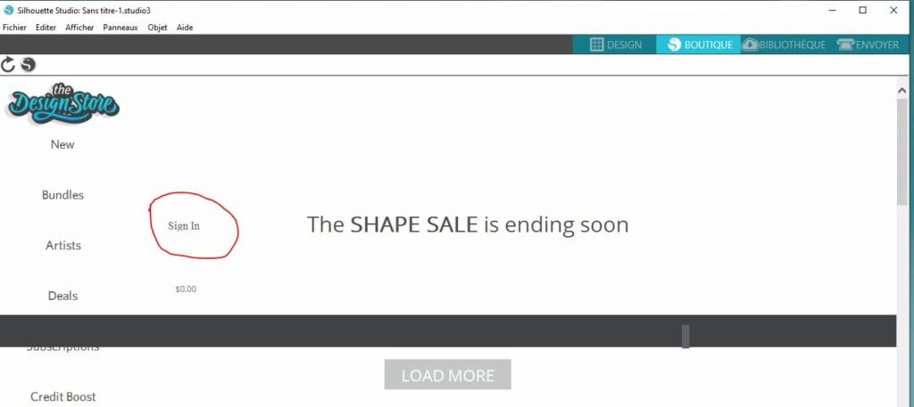 Problème de connexion pour boutique silhouette Silhou10