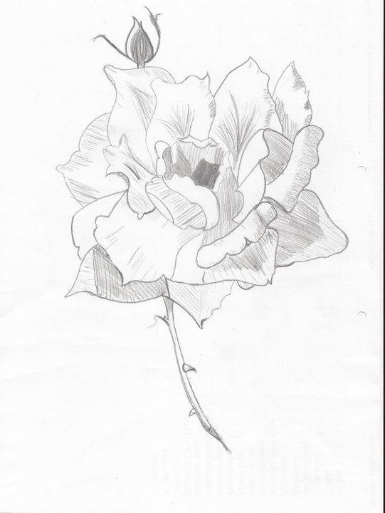 Jetez un coup d'oeil : Ma galerie de créa's :D Fleur10