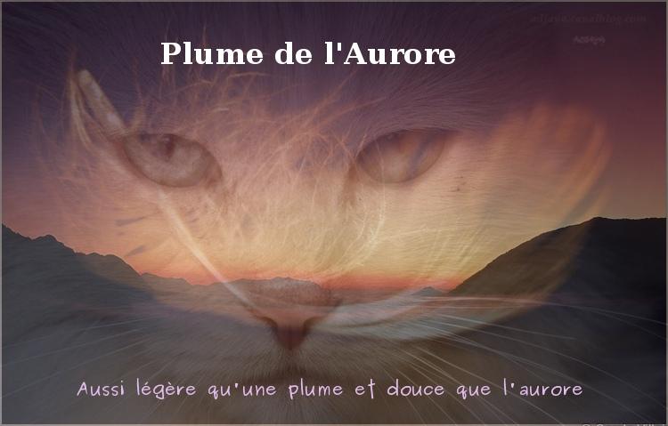 Cours d'Aurore & Soleil [Gimp] - Page 2 Plume_11