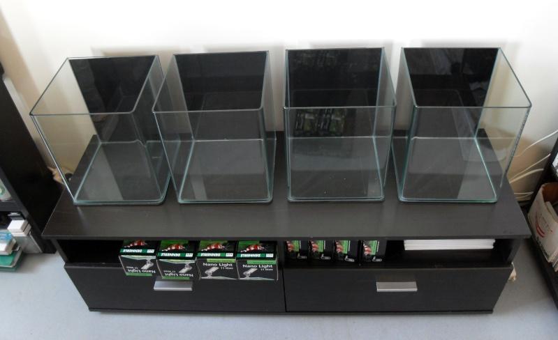 Mes bacs 200L, 60L et 8 x 20L (nouvelles photos) Cuves_10