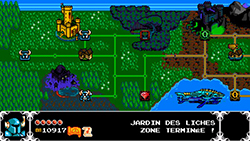 [TEST] Shovel Knight Dsd4z310