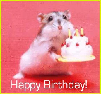 Happy Birthday VioletQaia :) Happyb21