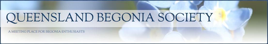 Queensland Begonia Society Forum