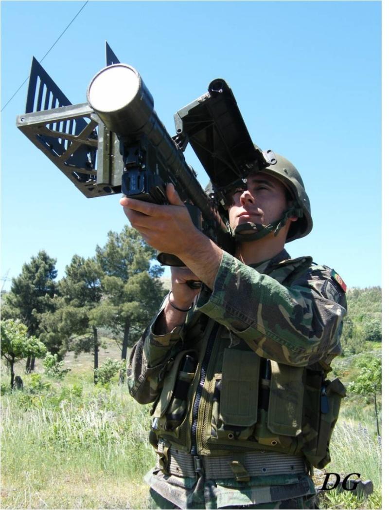 Forças Armadas Portuguesas/Portuguese Armed Forces - Page 5 Choose35