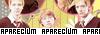 Aparecium  Part110