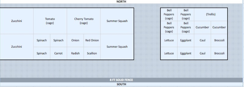 Help! New SFG - feedback on my plan please??? Garden10