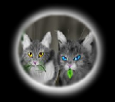 Herb Quiz(Medicine Cats for Main Clans Only) Badge111