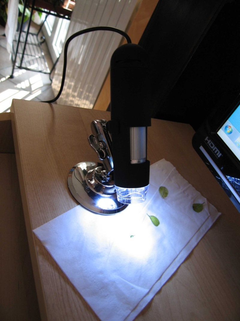 Microscopio USB Img_3414