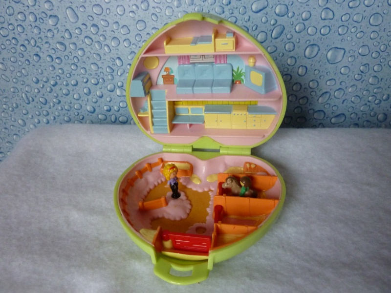Mes polly pocket vintage P1030319
