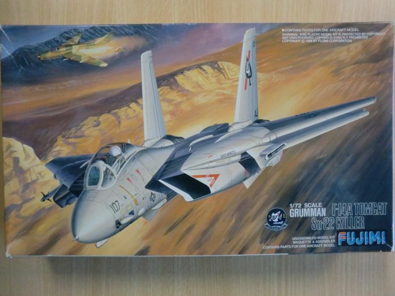 Grumman F-14A Tomcat  in 1:72 Cimg4037