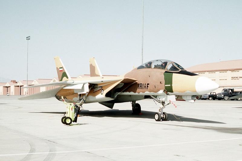 Grumman F-14A Tomcat  in 1:72 Us_f-110