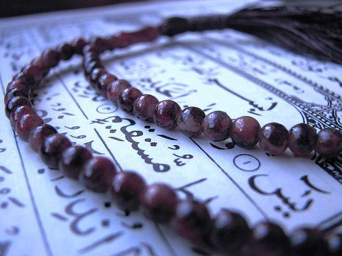 البرنامج العبادي الأول لمرحلة طالبين السلوك الى الله المرحلة الاولى القدسية