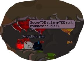 Sucre & Sang = <3 Sucre_10