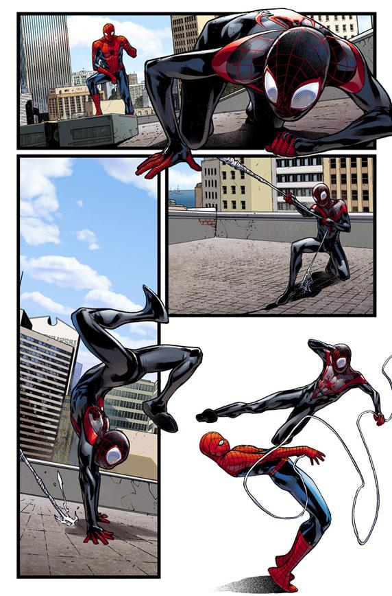 Spider Men Prv12512