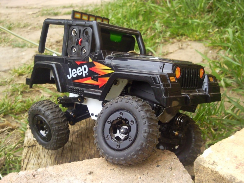 [Losi Micro Crawler] Jeep sur losi Photo012