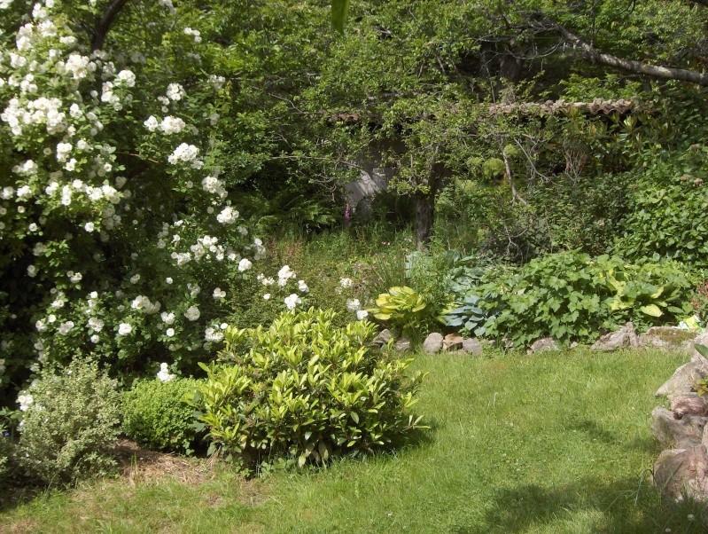Petit tour du jardin côté montagne 01610