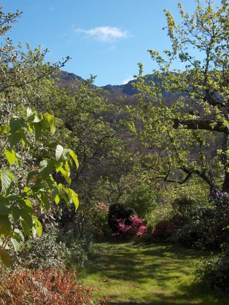 Petit tour du jardin côté montagne Vue110