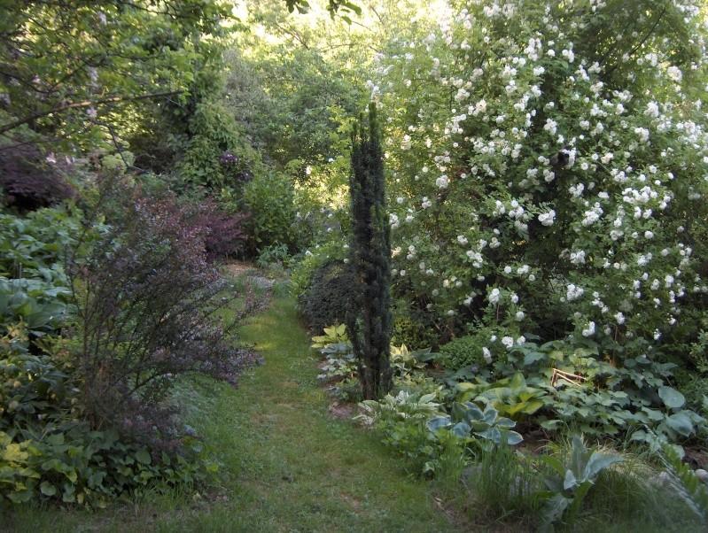 Petit tour du jardin côté montagne Vue210