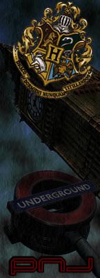 Hogwarts Dimensional