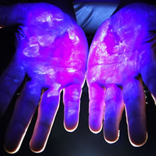 These hands have been levinitized Clean_10