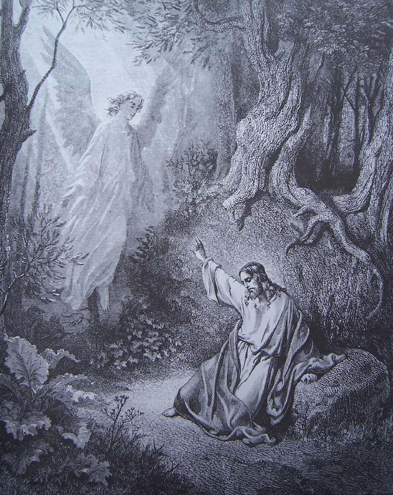 La Bible illustrée par Gustave Doré - Page 8 Gravu204