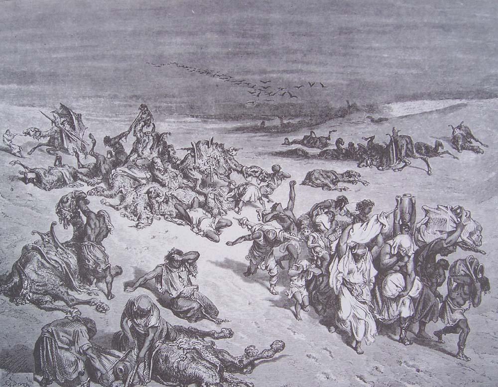 La Bible illustrée par Gustave Doré - Page 2 Gravur42